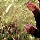 7. Illatnévjegyek azonosítása (illatteszt)