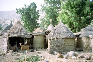 Kameruni házak