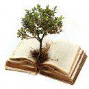 15. Mi lenne a Bibliában, ha…?