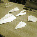12. Repülő- és madárinvázió