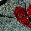 6. A szerelem fonákja