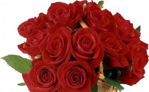 Kosár rózsa