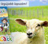 Megjelent a CikCakk Magazin tavaszi száma