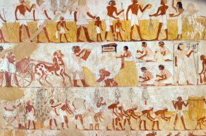 Egyiptomi gabona 2