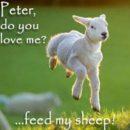 08. Jézus és Péter párbeszéde